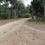 The Water Project: Lokomasama, Bofi Village -  Entrance Of The Village