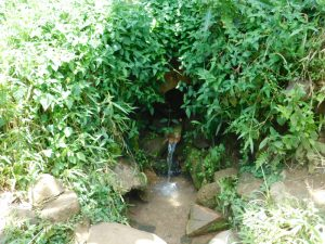 The Water Project:  Current Situation Of Olando Spring