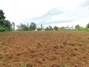 The Water Project:  Landscape Around Olando Spring