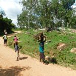 The Water Project: Mushikulu B Community, Olando Spring -  Some Firewood To Prepare Meals