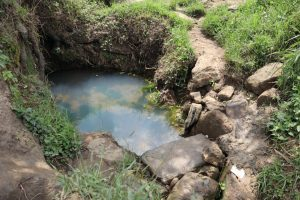 The Water Project:  Open Spring