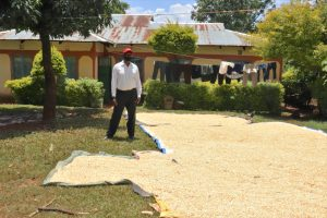 The Water Project:  His Aired Maize Harvest
