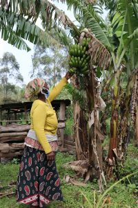 The Water Project:  Checking On The Bananas