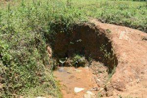 The Water Project:  Mukeya Spring
