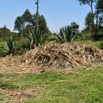 The Water Project: Shianda Commnity, Mukeya Spring -  Garbage Disposal Point
