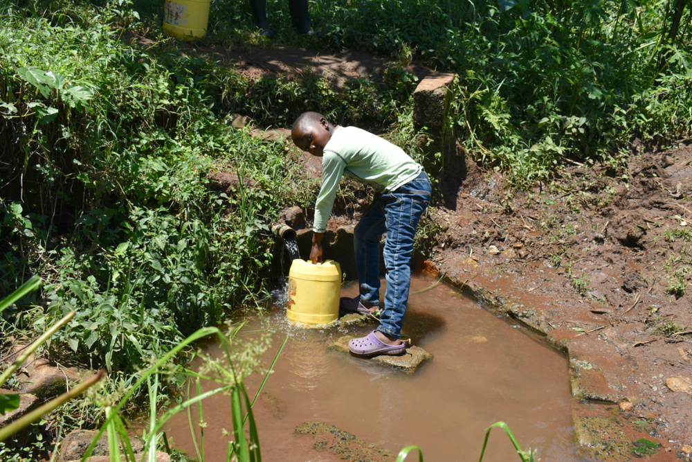 The Water Project : kenya21004-francis-collecting-water-3