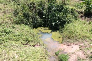 The Water Project:  The Terrible State Of Mulunda Spring