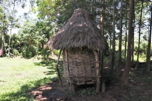 The Water Project:  A Small Family Granary