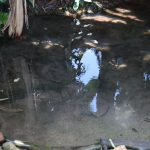 The Water Project: Kalenda A Community, Moro Spring -  Closeup Of The Spring