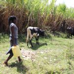 The Water Project: Kalenda A Community, Moro Spring -  Juliet Headed Home With Water