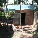 The Water Project: Kalenda A Community, Moro Spring -  Poultry Enclosure