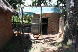 The Water Project:  Poultry Enclosure