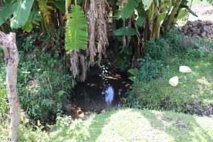 The Water Project:  Unprotected Spring