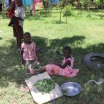 The Water Project: Luyeshe Community, Khausi Spring -  Girls Preparing Greens For Cooking