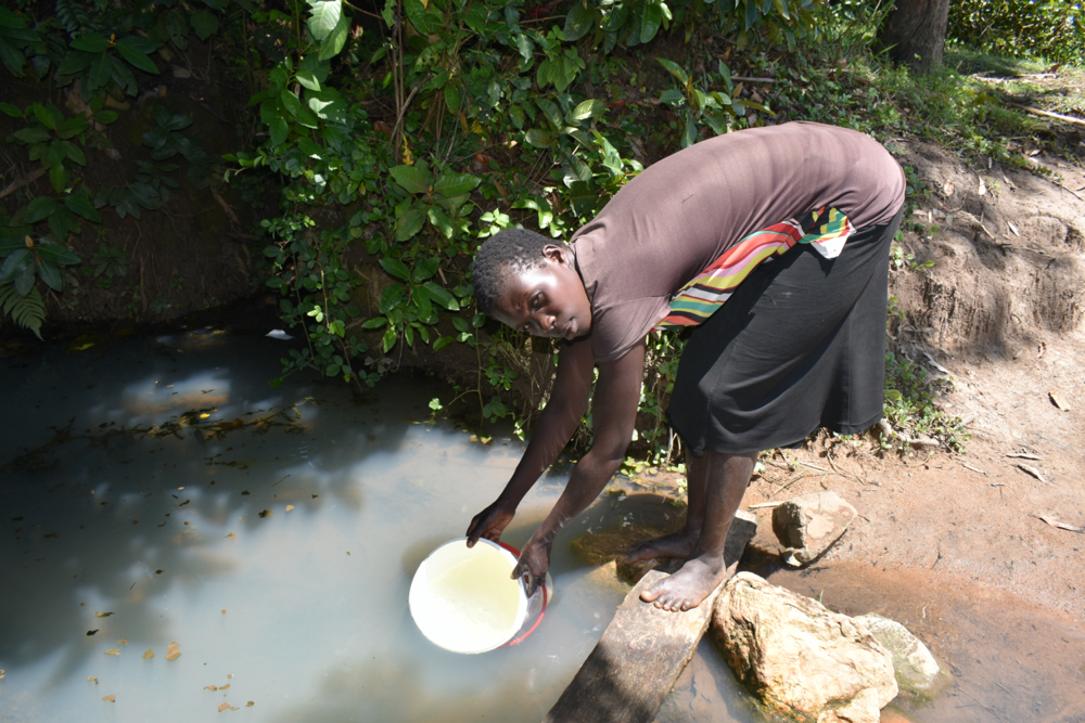 The Water Project : kenya21039-collecting-water-1