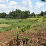 The Water Project: Shihome Community, Oloo Njinuli Spring -  Gradual Sloping Topography