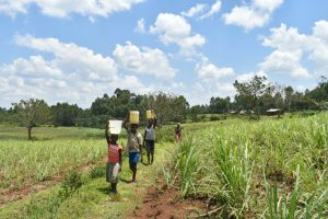 The Water Project:  Heading Home With Water