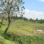 The Water Project: Shihome Community, Oloo Njinuli Spring -  Community Landscape