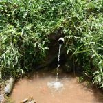 The Water Project: Shihome Community, Oloo Njinuli Spring -  Current Condition Of Spring