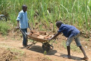 The Water Project:  Boys Bring Bricks To Spring Site