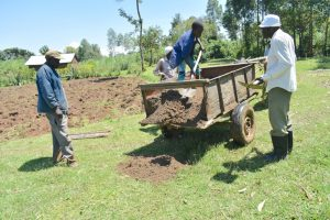 The Water Project:  Offloading Sand From An Ox Cart