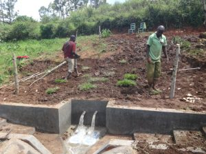 The Water Project:  Grass Planting And Fencing