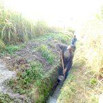 The Water Project: Maraba Community, Nambwaya Spring -  Digging The Drainage Channel