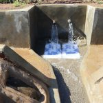 The Water Project: Mahira Community, Anunda Spring -  Clean Water Flows