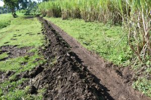 The Water Project:  Cut Off Drainage Channel Above Spring
