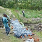 The Water Project: Lukala C Community, Livaha Spring -  Protecting Plaster From Oncoming Rainfall