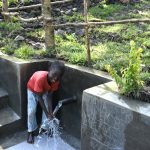 The Water Project: Lukala C Community, Livaha Spring -  Clean Water Flowing