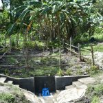 The Water Project: Lukala C Community, Livaha Spring -  Protected Livaha Spring