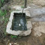 The Water Project: Muyundi Community, Magana Spring -  Drinking Trough For Cows