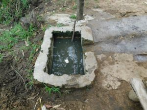 The Water Project:  Drinking Trough For Cows