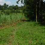 The Water Project: Muyundi Community, Magana Spring -  Path To The Spring