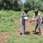 The Water Project: Mukoko Community, Zebedayo Mutsotsi Spring -  Children Washing Hands