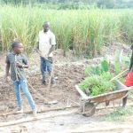 The Water Project: Emusaka Community, Muluinga Spring -  Bringing Grass To Plant At The Spring