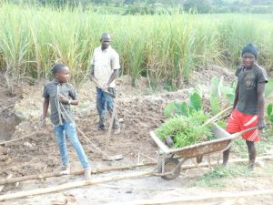 The Water Project:  Bringing Grass To Plant At The Spring