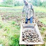 The Water Project: Emusaka Community, Muluinga Spring -  Bringing Stones To Spring Site