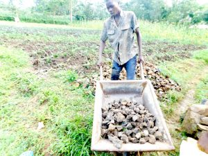 The Water Project:  Bringing Stones To Spring Site