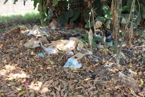 The Water Project:  Garbage