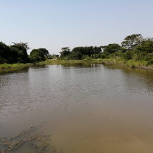 The Water Project:  Open Water Source