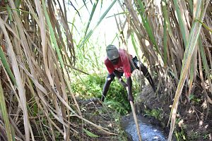 The Water Project:  Digging The Drainage Channel