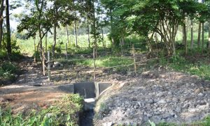 The Water Project:  A Good View Of Olingo Spring