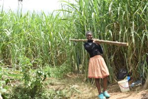 The Water Project:  Girl Carrying A Fencing Pole