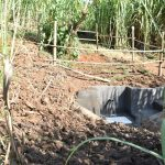 The Water Project: Musango Commnuity, Wabuti Spring -  Catchment Area Fenced