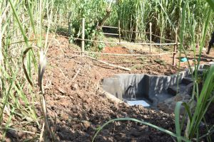 The Water Project:  Catchment Area Fenced