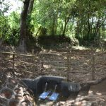 The Water Project: Kimang'eti Community, Kimang'eti Spring -  The Completed Spring