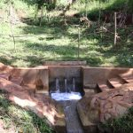 The Water Project: Shihome Community, Peter Majoni Spring -  Peter Majoni Spring With Grass Grown In