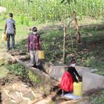 The Water Project: Eshiasuli Community, Eshiasuli Spring -  Esther Fethes Water
